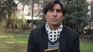'Honour killing' whistleblower shot dead