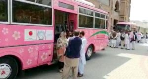Pink bus service starts in Mardan