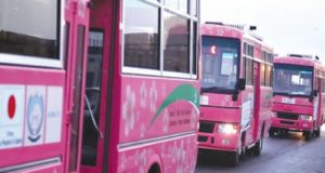 Pink Bus service in Mardan a big flop