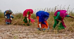 Protection of women farm workers' rights urged