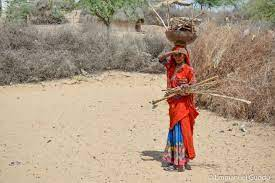 Sindh lies dormant on women's development